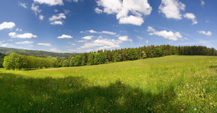 Summer Meadow Panorama Stock Photography