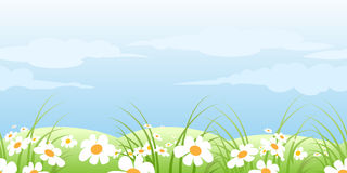 Summer meadow pattern Stock Photos