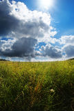 Summer meadow and sky Royalty Free Stock Photo