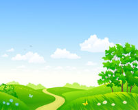 Summer meadow and sky background Royalty Free Stock Photos