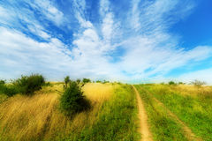 Summer meadows landscape Royalty Free Stock Photo