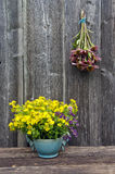 Summer medical flowers - st.Johns wort and echinacea herbs bunch on wooden wall Stock Image