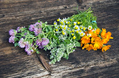 Summer medical herbs flowers bunch on old wooden background Royalty Free Stock Image