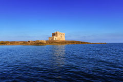 SUMMER.Mediterranean maquis: a nature reserve of Torre Guaceto.BRINDISI (Apulia)-ITALY- Stock Images