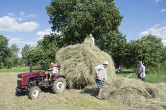 In the summer on the men removed the hay from the field and plac. In summer, a bright sunny day on the men removed the hay from the field and placed him in the Royalty Free Stock Photos