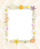 Summer message board,Shell Decoration-EPS10 Royalty Free Stock Photos