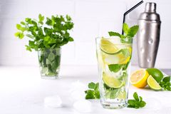 Summer mint lime refreshing cocktail mojito with ice in glass , fresh ingredients. And cocktail shaker Royalty Free Stock Photography