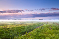 Summer Misty Morning Over Meadows Stock Images
