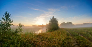 Summer misty sunrise on the river. Foggy river in the morning. P Stock Photography