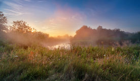 Summer misty sunrise on the river. Foggy river in the morning. P Royalty Free Stock Images