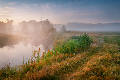 Summer misty sunrise on the river. Foggy river in the morning. S Royalty Free Stock Photography