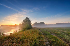 Summer misty sunrise on the river. Foggy river in the morning. S Royalty Free Stock Images