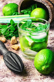 Summer Mojito cocktail Stock Photography