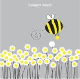Summer mood. Royalty Free Stock Photos