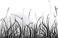Summer morning. Black-and-white background with grass and bugs,  design element Royalty Free Stock Images