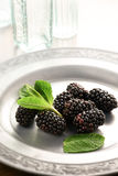Summer Morning Blackberries Stock Images