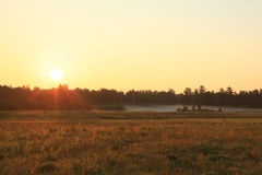 Summer morning Royalty Free Stock Photography