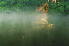 Summer morning fog on the river.Horizontal view. Stock Photos