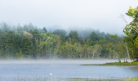 Summer morning foggy mist rises from lake into cool air. Stock Photography