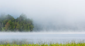 Summer morning foggy mist rises from lake into cool air. Royalty Free Stock Photos