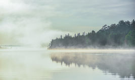 Summer morning foggy mist rises from lake into cool air. Stock Photos