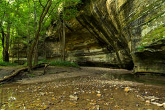 Summer morning in Illinois Canyon. Summer morning in Illinois Canyon as water flows lightly across the canyon floor.  Starved Rock State Park, Illinois Royalty Free Stock Image