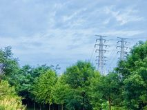 Summer morning after a rain electrical wires. Summer morning after a rain green and blue stock photo