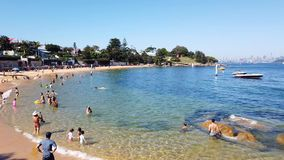 Camp Cove Beach, Sydney Harbour, Australia. Summer morning swimming at Camp Cove yellow sand beach, Watsons Bay, Sydney Harbour, NSW, Australia stock video footage