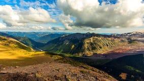 Summer at Mount Rainier National Park, Washington stock photography