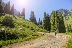 Summer  mountain Central Asia Royalty Free Stock Photos