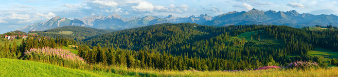 Summer mountain country panorama. Stock Photos