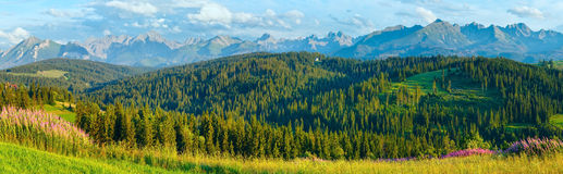 Summer mountain country panorama. Royalty Free Stock Image