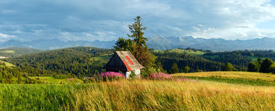 Summer mountain country panorama. Stock Images