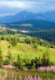Summer mountain country view Royalty Free Stock Image