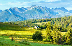 Summer mountain country view Stock Image