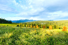 Summer mountain country view Stock Images