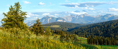 Summer mountain evening country panorama Royalty Free Stock Photos