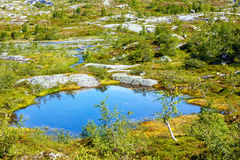 Summer mountain lake (Norway) Royalty Free Stock Images