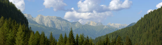 Summer mountain landscape. Beautiful summer mountain landscape. View of the Catena del Lagorai (Trentino-Alto Adige, Italy Royalty Free Stock Photography