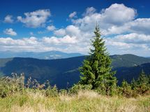 Summer mountain landscape. The end of summer. The picture is made in mountains Carpathians, Ukraine stock photo