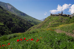 Summer mountain landscape. Landscape view on mountain green slopes, old authentic village on the hill and red summer flowers in front Royalty Free Stock Photography