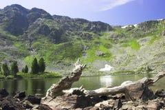 Summer mountain landscape Stock Image