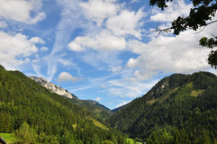 Summer Mountain Landscape Royalty Free Stock Images