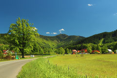Summer mountain landscape Stock Photography