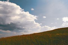 Summer mountain landscape. Summer landscape on the mountain against the sky and clouds Royalty Free Stock Photography