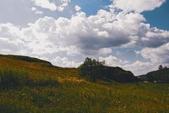 Summer mountain landscape. Summer landscape on the mountain against the sky and clouds Stock Photo