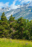 Summer mountain landscape (Alps, Switzerland) Stock Image