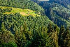 Summer mountain landscape around Gletsch, Switzerland Royalty Free Stock Image
