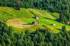 Summer mountain landscape around Gletsch, Switzerland Royalty Free Stock Images