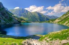 Summer mountain landscape. Royalty Free Stock Photo